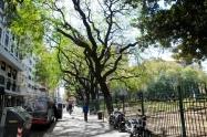 Erinnert ein wenig an den Central Park in New York