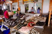 Fischmarkt in Tongoy
