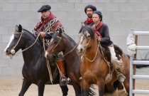Traditionelle Gaucho-Gruppe 3