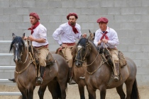 Traditionelle Gaucho-Gruppe 2
