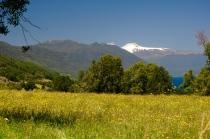 Die Landschaft hier bei den chilenischen Seen ist wunderschön
