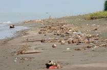 Leider haben wir eine Zeit mit sehr viel Müll und Strandgut erwischt...