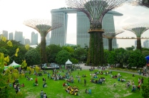"...hinter den ""Supertrees"" im Gardens by the Bay..."