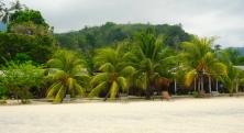 Bushmans Bungalows liegen unter Palmen...